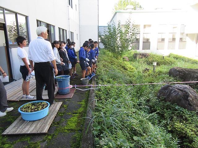 原谷小学校在来種ビオトープ学習会2017