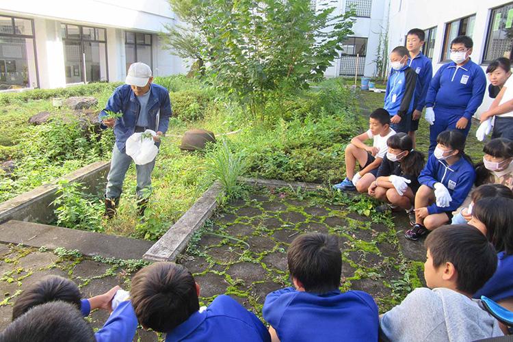 地元小学校と自然環境についての勉強会
